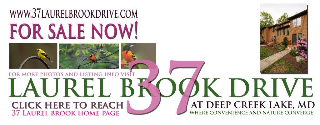 37 Laurel Brook Drive is For Sale